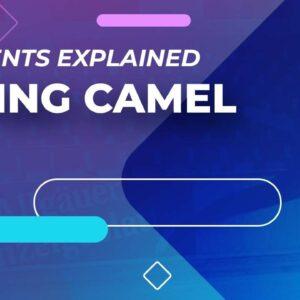 Flying Camel - Elements Explained | #FigureSkating